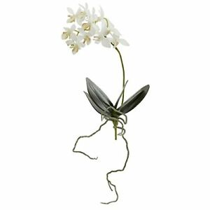 13 In. Mini Orchid Phalaenopsis Artificial Flower (Set of 6)
