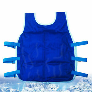 24 Ice Bag Universal Summer Cooling Vest Outdoor Riding Fishing Sports Free Size