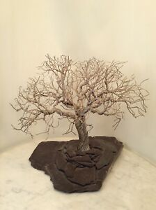 Large Mid Century Modern Twisted Wire Metal Stone Tree Sculpture Artist