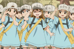 243304 Cell at Work Platelets Anime WALL PRINT POSTER CA