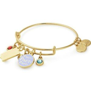 ALEX AND ANI FRIENDS COUCH PIVOT CLUSTER Charm Bangle Bracelet Gold $36.99