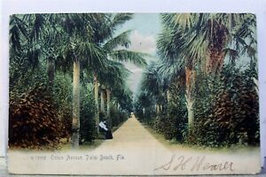Florida FL Palm Beach Ocean Avenue Postcard Old Vintage Card View Standard Post $1.00