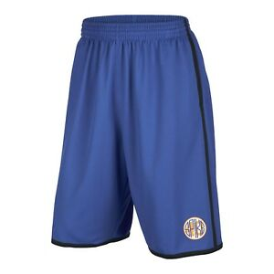 Jordan Men's Nike Spike 40 Mesh Shorts-Game Royal