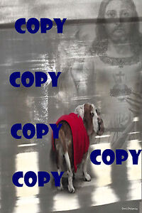 Jesus and Rescued Basset Hound in Red Coat.