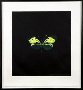Damien Hirst — The Souls on Jacobs Ladder Take Their Flight Green Butterfly 07