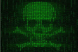Computer Virus Cyber Security Skull and Crossbones Art Print Poster 18x12