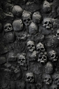 Skulls in Wall Spooky Photo Art Print Poster 12x18 inch