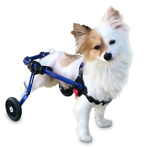 Refurbished Dog Wheelchair Extra Small For Mini Toy Breeds By Walkin#x27; Wheels