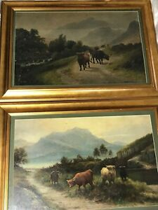 Pair Victorian Oil Paintings 19th Century Scottish Highlands Long Horn Cattle