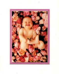 PORTAL - ANNE GEDDES CHEESE CAKE BABY LITHOGRAPH MATTED 8X10 PHOTO - SEALED $12.99