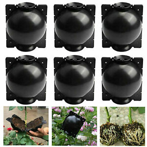 6pcs Plant Rooting Device Growing Grafting Box High Pressure Propagation Ball US