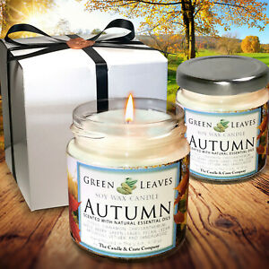 Handmade Fall Soy Candles that smell AMAZING 4oz Jars Highly Scented Candle