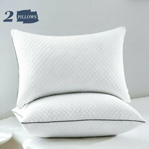 GOHOME 2 Pack White Soft Down Bed Pillows Velvet Cover Standard Queen King Size $33.99