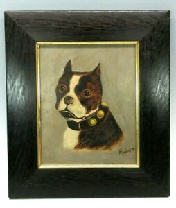 Victorian oil painting of a Boston Terrier dog or American Pitbull signed Ruben $165.00