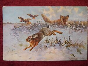 ANIMAL ARTIST SIGNED POSTCARD WILDLIFE RABBIT FOX 1918 $10.00