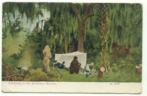 Camping In The Southern Woods 1912 Postcard