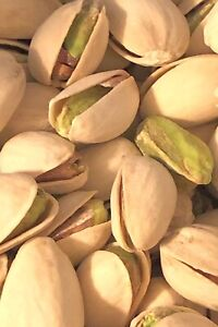 Fresh Roasted and Salted In Shell PISTACHIOS Bulk Packaged Choose Your Weight $6.99