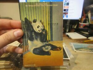Vintage Old Postcard CHICAGO ILLINOIS Brookfield Park Zoo Giant Panda Bear Cage
