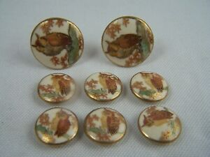 Vintage 6 Satsuma Owl Buttons and 2 Matching Cufflinks