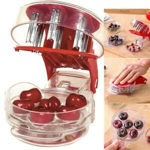 6 Hole Cherry Pitter Olive Seed Corer Remover Handheld Kitchen Machine Canning