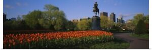 Poster Print Wall Art entitled Low angle view of a statue in a garden George