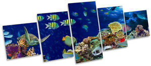 Tropical Fish Marine Coral Framed CANVAS PRINT Five Panel Wall Art