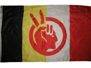 American Indian Movement Flag Native American Rights Protest 3x5 ft Banner AIM $8.24