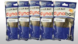 Dynabait Fresh Mudeyes 8x best trout baits 6 months with no freezer required