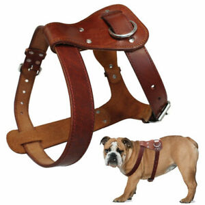 Genuine Leather Dog Harness Brown Real Leather Dogs Walking Training Vest free