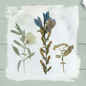 Pressed Flowers on Shiplap I Wall Decal