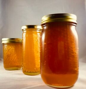 Honeycomb Florida Wildflower Full Comb Honey 1.5 Lb 24 Fl oz $21.99