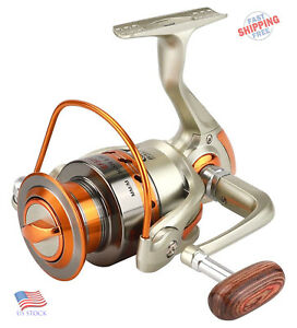 Saltwater Fishing Spinning Reel Left Right Interchangeable 12BB Ball Bearing