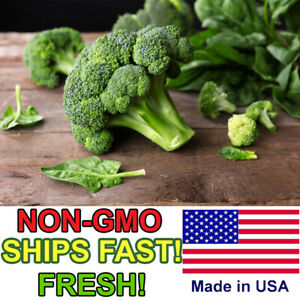 100+ ORGANIC Broccoli Seeds | Non-GMO | FRESH Vegetable Garden Seeds
