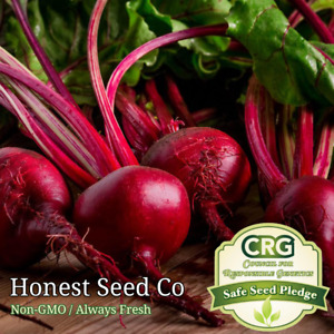 Detroit Dark Red Beet Seeds | Non-GMO | Fresh Vegetable Garden Seeds