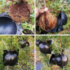 10x Ball Growing Plant Rooting Device Propagation High Pressure SMALL SIZE 1.96