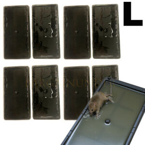 2 To 16 Pcs Disposable Glue Traps for Mice Rats Mouse Super Stick Tray US Seller