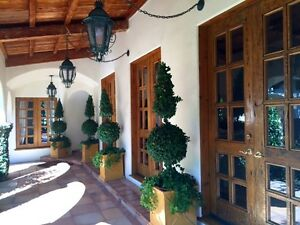 Hand Carved Wooden Kitchen  Doors  Windows from Estate in Beverly Hills