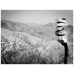 Desert Stack 5.5quot;X4quot; Note Card with envelope Joshua Tree National Park CA $4.99