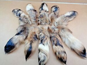 Rare #1 Quality Super Soft XL Tanned Finn Raccoon Tail Crafts Coyote Tail
