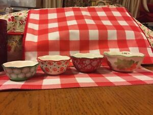 4 MEASURING CUPS NESTING BOWL THE PIONEER WOMAN POINSETTIA HOLIDAY STONEWARE New