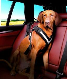 Dog Safety Harness Walk Control Soft Mesh Seat Belt Car Adjustable Lead Travel