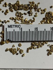ONE GENUINE COLORADO GOLD NUGGET SPECIAL KIDS PRICE FOR YOUR  COLLECTION