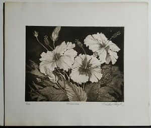 LINDA LLOYD Original Etching Hibiscus Signed Numbered