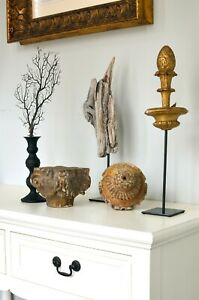 A collection of natural and architectural fragments antique and modern $275.00