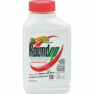 LOT OF 2 Roundup Concentrate Plus Weed & Grass Killer Fast Act 12 HRS , 1 Pint