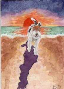 ACEO Original Watercolor Painting Wire Hair Fox Terrier Dog US Artist B Donati  $19.99