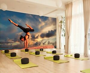 3D Yoga Exercise ZHUA1240 Wallpaper Wall Murals Removable Self adhesive Amy