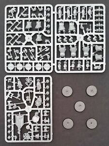 5 Hammerers or Longbeards Dwarves Warhammer Cities Sigmar Greywater Axes Duardin