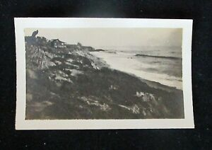 ANTIQUE ORIGINAL PHOTO COVE LAGUNA BEACH CALIFORNIA HOME OF FRANK CUPRIEN C.1915 $75.00