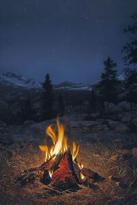 Stephen Lyman MOUNTAIN CAMPFIRE CNV SNwCOA   OFFER? FREE SH*